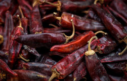 Dried red hot chili peppers are lying in a heap, glitering with different shades of red. Dried red peppers are lying in a heap, glitering with different shades Stock Images