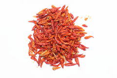 Dried Red Hot Chili. Portrait of organic dried red and orange hot chili paprika with seeds around Stock Photo