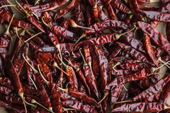 9Dried red hot chilli peppers on craft paper background. Stock Images
