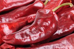 Dried red hot  pepper Royalty Free Stock Image