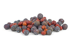 Dried red juniper and high juniper berries Royalty Free Stock Image