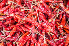 Dried red pepper Royalty Free Stock Photography