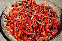 Dried red pepper Stock Photo