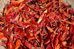Dried red pepper Stock Photos