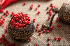 Dried red pepper spice Stock Images