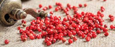 Dried red pepper spice. On burlap Royalty Free Stock Images
