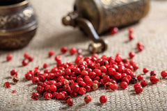 Dried red pepper spice. On burlap Royalty Free Stock Photo