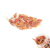 Dried red peppers. On white background Stock Photography
