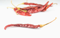 Dried red peppers  on  background Royalty Free Stock Images