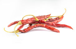 Dried red peppers isolated on  white background Royalty Free Stock Photography
