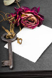 Dried red rose, rusty key and blank photograph, Stock Photo