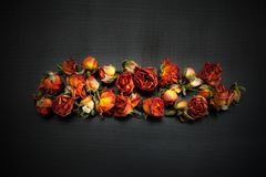 Dried Red Roses. Royalty Free Stock Images