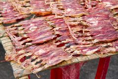 Dried red squid Sun on the grid Stock Image