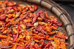 Dried red and yellow chilli on threshing basket royalty free stock image