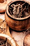 Dried Valerian roots royalty free stock photography