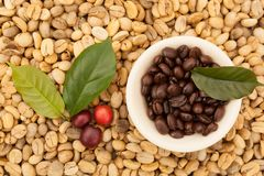 Dried, ripe and roasted coffee beans. Dried and roasted coffee beans with red coffee berries from above. Coffee background Royalty Free Stock Image