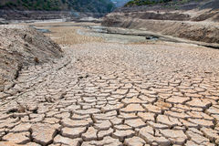 Dried river Royalty Free Stock Photos