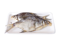 Dried river fish Royalty Free Stock Photo