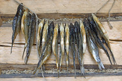 Dried roach fish. Royalty Free Stock Photos