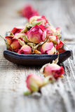 Dried rose buds Royalty Free Stock Photos