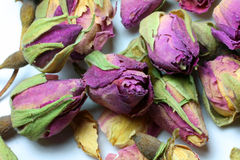 Dried Rose Buds Royalty Free Stock Image