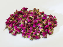 Dried rose flower buds Stock Photos