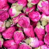Dried rose flowers texture background closeup Royalty Free Stock Image