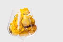 Dried rose flowers in wine glass, white background. yellow petals macro view, copy space, soft focus, shallow depth of. Dried rose flowers in wine glass, white Royalty Free Stock Photos