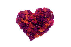Dried rose heart Royalty Free Stock Photos