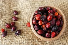Dried rose hip berries Stock Image