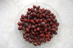 Dried rose hip Royalty Free Stock Image