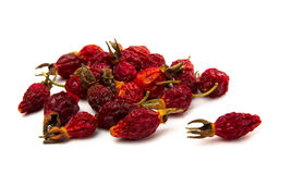 Dried rose hips Royalty Free Stock Image
