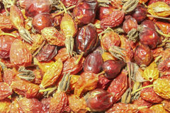 Dried rose hips Stock Photo