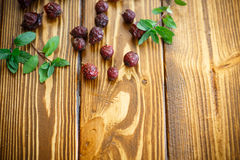 Dried rose hips Royalty Free Stock Photography