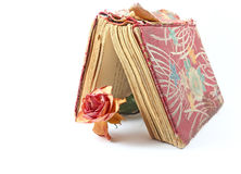 Dried rose on an old book Stock Images