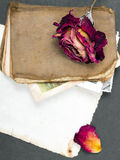 Dried rose, old book and empty photograph Royalty Free Stock Images