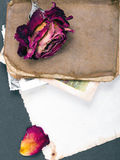 Dried rose, old book and empty photograph Stock Photo