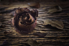 Dried Rose on old wooden board, broken heart concept Royalty Free Stock Images