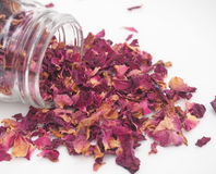 Dried Rose Petals Royalty Free Stock Images
