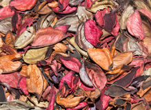 Dried rose petals. Dried rose petals background, close up royalty free stock photo