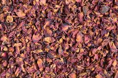 Dried rose petals Royalty Free Stock Photo