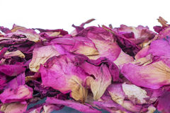 Dried rose petals for natural herbal drink. Stock Photography