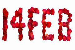 Dried rose petals spelling out, 14 Feb Royalty Free Stock Photo