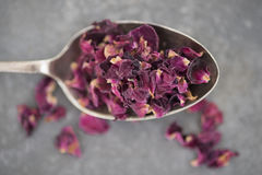 Dried Rose Petals on Spoon Stock Photography