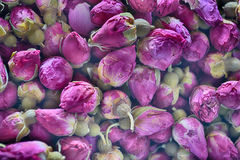 Dried rosebuds. Background texture closeup Royalty Free Stock Image