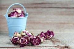Dried rosebuds on old wooden background Stock Photography