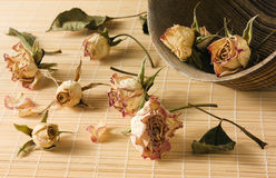 Dried rosebuds scattered from wooden bowl Royalty Free Stock Image