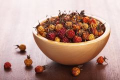 Dried rosehips Stock Image
