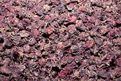 Dried Roselle flowers Stock Images