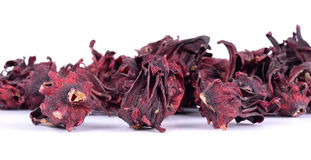 Dried roselle isolated on the white background Royalty Free Stock Image